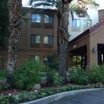 Foto di Red Roof Inn Phoenix Airport