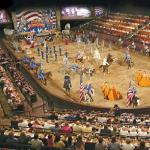 The arena where you watch the show and eat.....