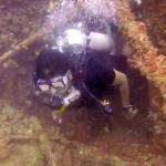 Foto di Merlin Divers - Kamala Diving Center