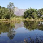 ... more great views on Solms Delta