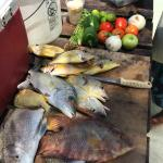 Catch of the Day (&Lunch prepared by guide)