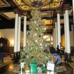 Christmas Tree in the center of the lobby