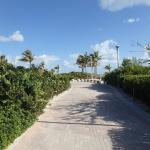Walking Paths between beach and hotel