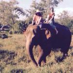 """Starting the treck with """"Noi"""" the elephant"""