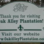 Oak Alley Plantation照片