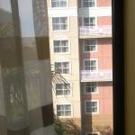 Foto van Courtyard by Marriott Tampa Downtown