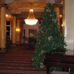 One of many Christmas Trees Decorating the Hotel