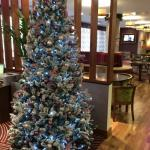 Christmas tree in lobby area