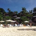 Phi Phi The Beach Resort resmi