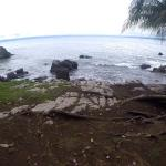 View off the front of the property into the Pacific Ocean.