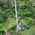 Φωτογραφία: The Kampung Resort Ubud