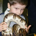 Getting to know the residents at The Reptile Village, Gowran, Ireland