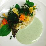 Mushroom Risotto, Foraged nettles, creek grass by Chef Rochelle Daniel