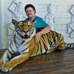 Having My  Photo Taken with a Tiger