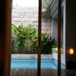View out to the private pool from the room