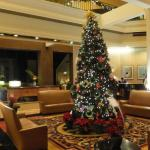 Christmas tree in lobby.