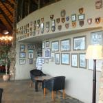 Part of the gallery of pictures