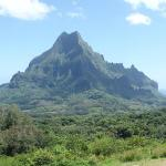 Photo of Franckyfranck Moorea Tours Private Tours