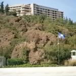 Photo of D-Hotel Maris
