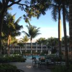 Pool & Grounds View