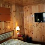 Wood paneled rooms with heating system on one of the walls