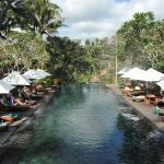 Maya Ubud Resort & Spa Foto