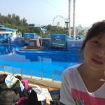 Enjoying the sealions & dolphins with extreme rides in the background