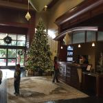 Front desk with Christmas tree