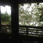 Φωτογραφία: La Selva Amazon Ecolodge