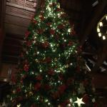 Entrance reception christmas tree
