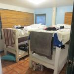 Foto Backpackers Vacation Inn and Plantation Village