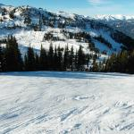 Aava is a top location if you're planning to hit the slopes. SO close to the Whistler gondola