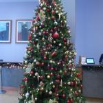 Christmas decorations in reception area