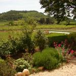 Garden, pool, vineyard and the Perréal Hill.