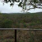 Foto di Thanda Private Game Reserve