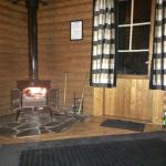 Tamarisk log burner