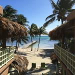 View from Room 6. Turtle Caye Classic Room