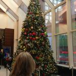 Crowne Plaza Lobby Christmas tree