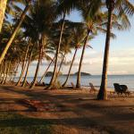 Beach Alamanda Palm Cove