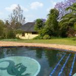 Beautiful pool and grounds