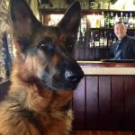 Dog Friendly Bar and Rooms