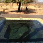 Madikwe Hills Private Game Lodgeの写真