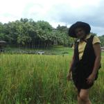 pottering around paddy field