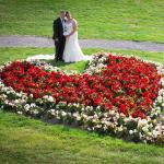 The Rose bed in the gardens- perfect wedding photo x
