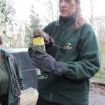 Water vole conservation project