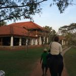the main entrance .. Horse riding