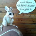 The Bilby -too dark to take any pictures inside but they where very busy and fun to watch inside
