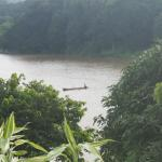 The Mahaweli river from our terrace