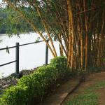A stroll by the Mahaweli river