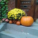 Pumpkins in a building near Copley House